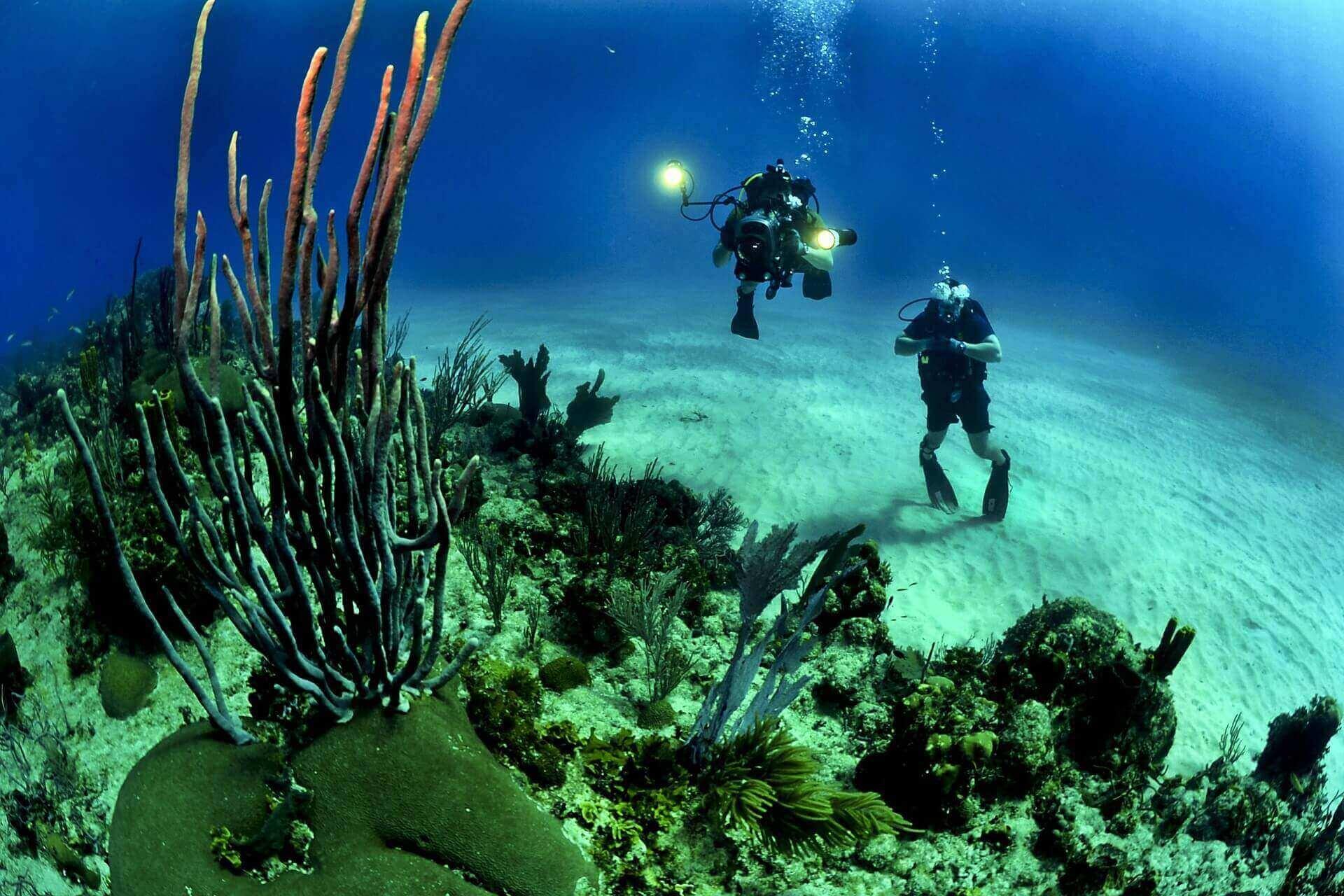 Scuab diving